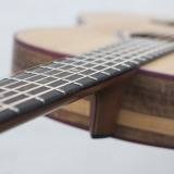 Acoustic Guitar Details Ergonomic Fret Board