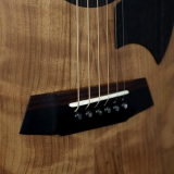 Acoustic Guitar Details Layered Bridge