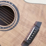 Acoustic Guitar Details New Vaultback