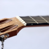 Acoustic Guitar Details Nut