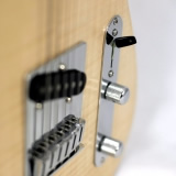 Acoustic Guitar Details Switch Detail