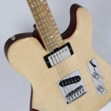 Hybrid Electric Guitar Angled Full Frontal