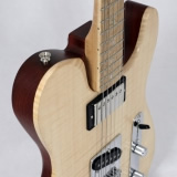 Hybrid Electric Guitars