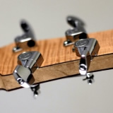 Hybrid Electric Guitar Headstock Back