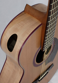 David Antony Reid, Gent Acoustic Guitar